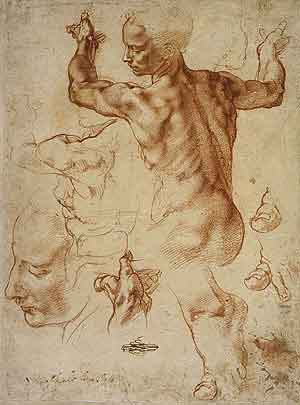 Michelangelo - Studies for the Libyan Sibyl
