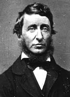 Summary of Book: Chapter Twenty Five on Henry David Thoreau