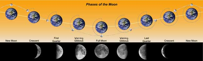 The Lunar phase refers to the appearance of the illuminated portion of the Moon as seen by an observer on Earth.